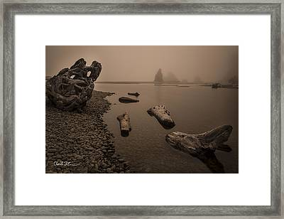 Ruby Beach Fog Framed Print by Charlie Duncan