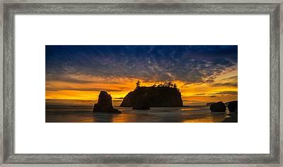 Ruby Beach Olympic National Park Framed Print by Steve Gadomski