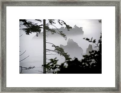 Ruby Beach Washington State Framed Print