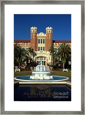 Ruby Diamond  Framed Print by Janet Sink