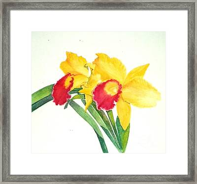 Ruby Kissed Orchids Framed Print