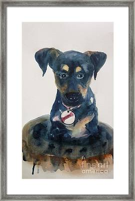 Ruby - Original Sold Framed Print