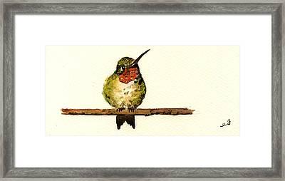 Ruby Throated Hummingbird  Framed Print by Juan  Bosco