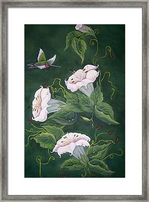 Hummingbird And Lilies Framed Print by Sharon Duguay