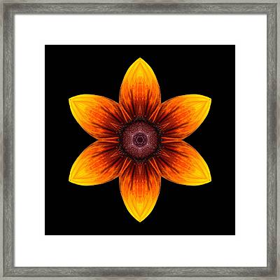 Rudbeckia I Flower Mandala Framed Print