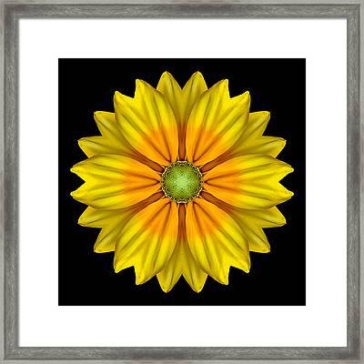 Rudbeckia Prairie Sun I Flower Mandala Framed Print by David J Bookbinder