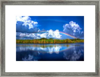 Rue's Rainbow Framed Print by Mark Andrew Thomas