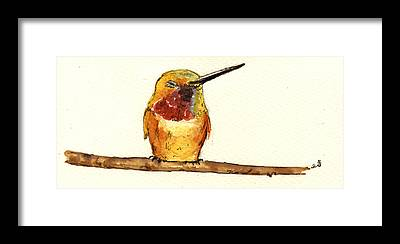 Rufous Framed Prints