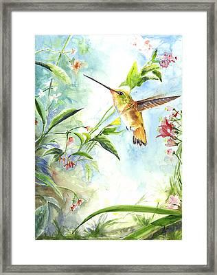 Rufus Paradise Framed Print