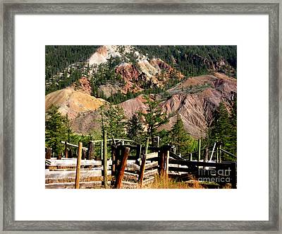 Framed Print featuring the photograph Rugged Beauty by Kathy Bassett