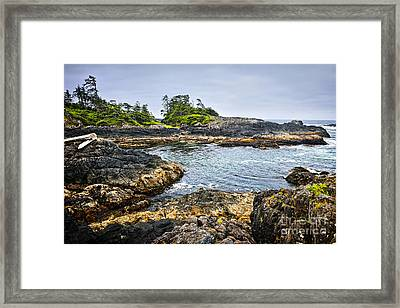 Rugged Coast Of Pacific Ocean On Vancouver Island Framed Print by Elena Elisseeva