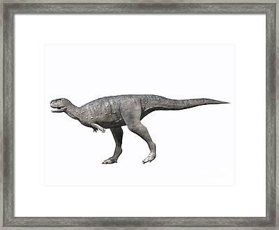 Rugops Primus, Late Cretaceous Of Niger Framed Print by Nobumichi Tamara