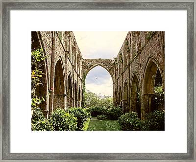 Ruins Abbaye De Beauport Paimpol Bretagne Framed Print
