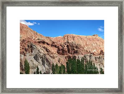 Ruins At Basgo Ladakh Framed Print