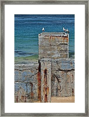 Ruins At Monterey Bay Framed Print by Susan Wiedmann