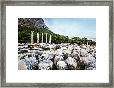 Ruins Of The Sanctuary Of Athena Framed Print