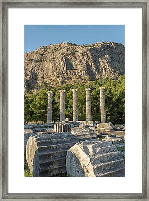 Ruins Of The Temple Of Athene Framed Print by David Parker