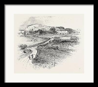 Wark Drawings Framed Prints