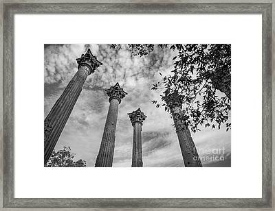Ruins Of Windsor In Southwest Mississippi Framed Print by T Lowry Wilson