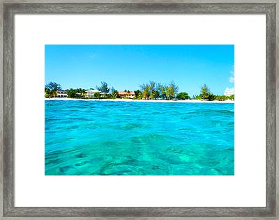 Rum Point Swim Framed Print