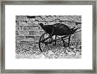 Run-down Wheelbarrow Framed Print by Christine Till