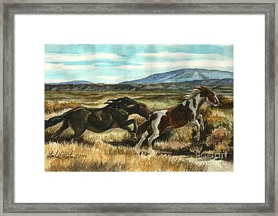 Run Little Horse Framed Print