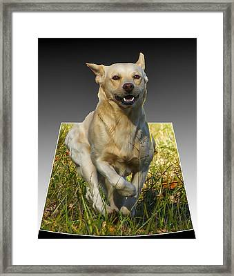 Framed Print featuring the digital art Run Puppy Run by B Wayne Mullins