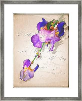 Run The Day Framed Print by Yvon van der Wijk