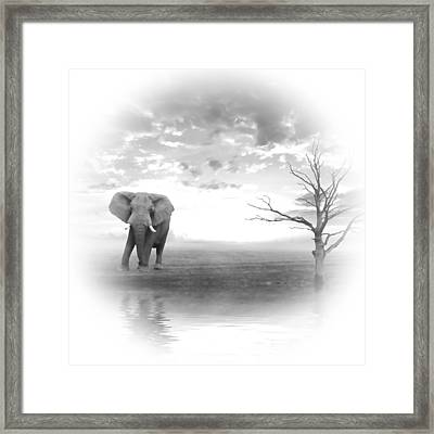 Run To Water 2 Framed Print by Sharon Lisa Clarke