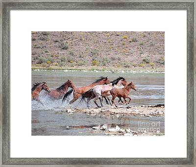 Running And Splashing Framed Print
