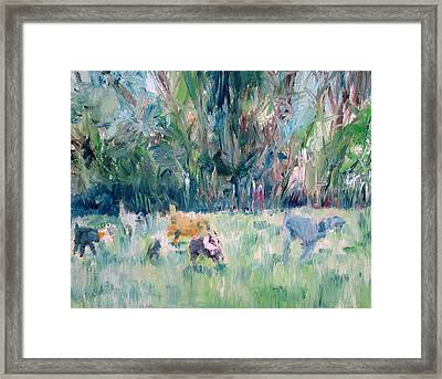 Running Dogs Framed Print by Fabrizio Cassetta