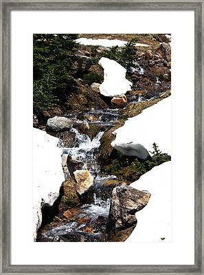 Running Down The Mountain Framed Print