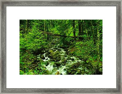 Running Down The Mountain Framed Print by Jeff Swan