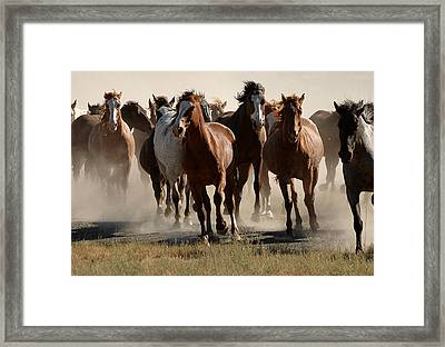 Running Free Framed Print by Lee Raine