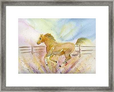 Framed Print featuring the painting Running Horse by Linda Feinberg