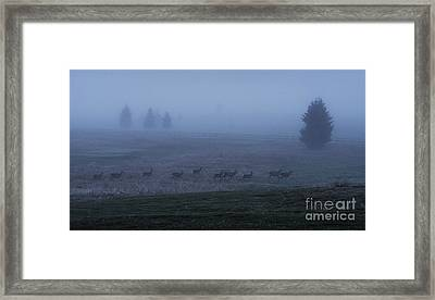Running In The Mist Framed Print