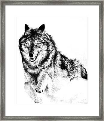 Running Framed Print by Janet Moss