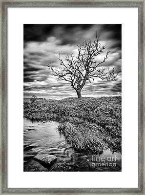 Running Through  Framed Print by John Farnan