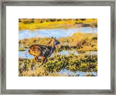 Running Waterbuck Framed Print