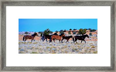Running Wild Framed Print