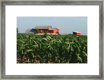 Rural Art Framed Print