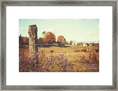 Rural Country Scene Framed Print by Sandra Cunningham