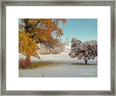 Rural Early Snow In Western Colorado  Framed Print