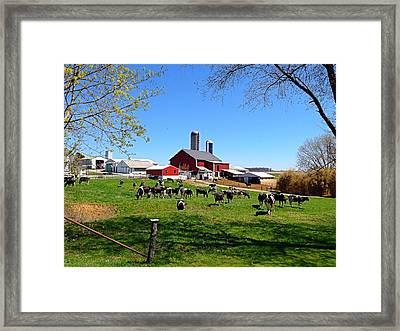 Rural Farm Framed Print