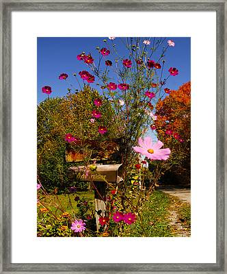 Rural Free Delivery Advantage Of Country Living Framed Print by Randall Branham
