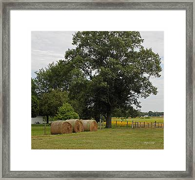 Rural Indiana Scenic - Carroll County Framed Print