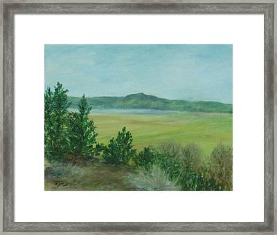 Rural Landscape Art Original Colorful Oil Painting Swan Lake Oregon  Framed Print