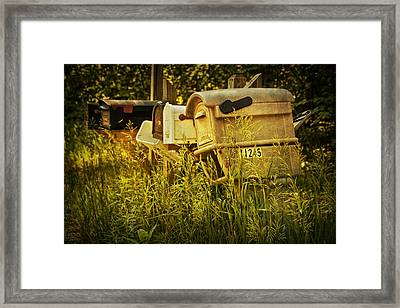 Rural Mail Boxes No.038 Framed Print by Randall Nyhof