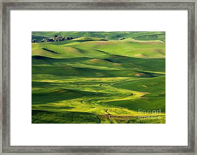Rural Patterns Framed Print by Mike Dawson