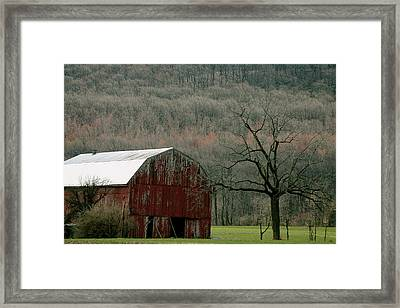 Rural Peace Framed Print